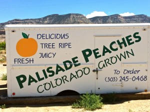 Palisade Peaches - Colorado Proud Campaign
